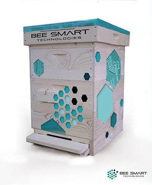 Bee_smart