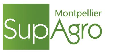 logo 2014 ok- pant 369 - Montpellier