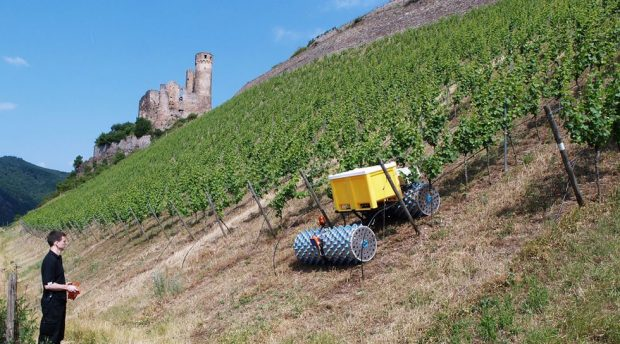 tracteur vigne en pente