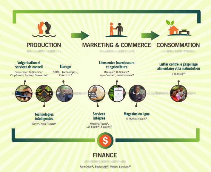 innovations frugales agriculture numérique TIC pays du sud Afrique Léo Pichon