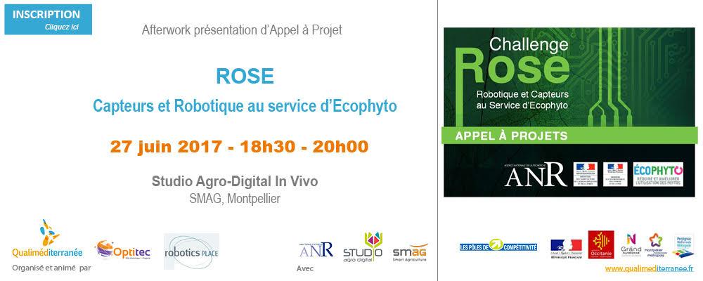 appel_rose