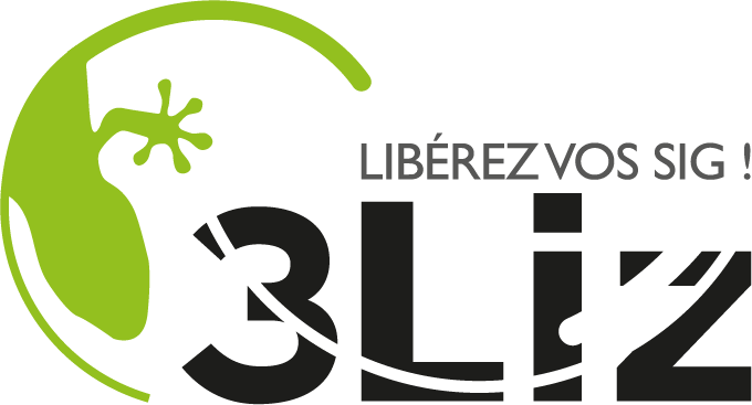 logo3liz