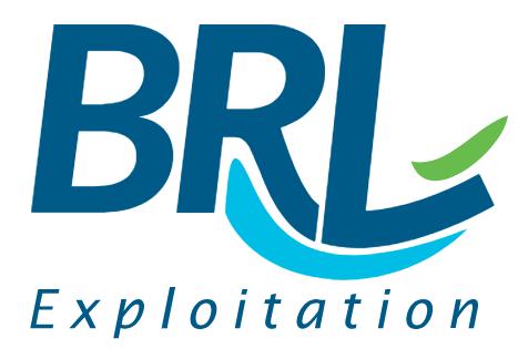 Logo_BRLE